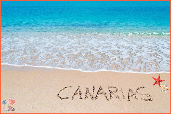 Luxury escorts in the Canary Islands